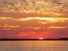 chobe-sunset