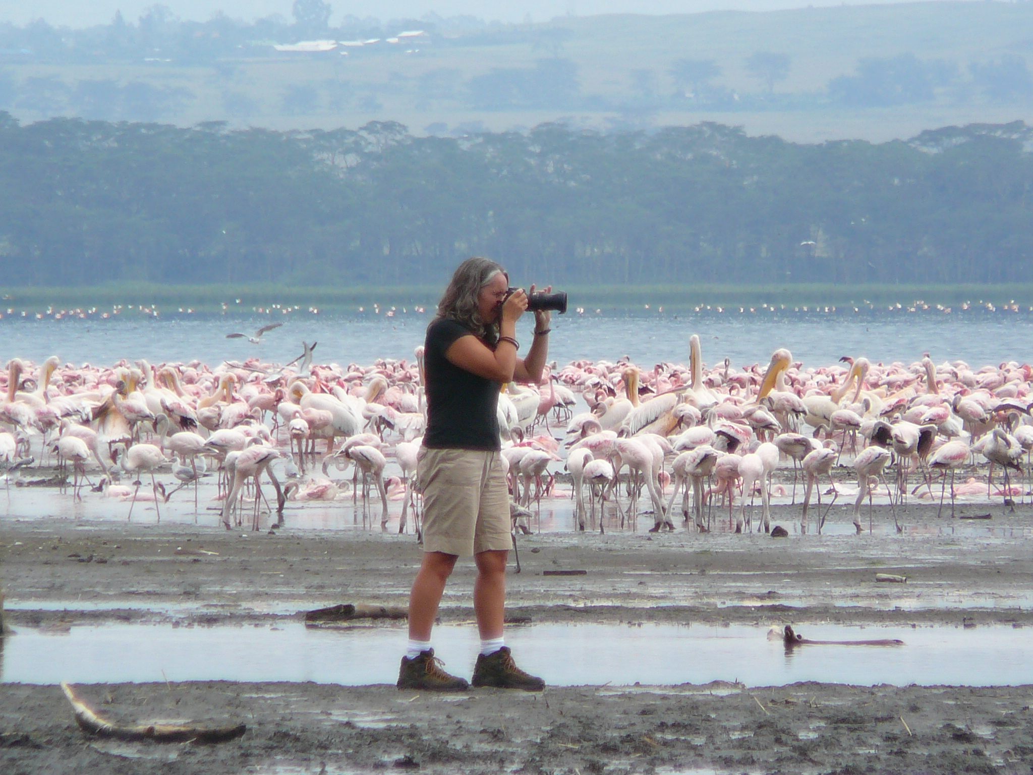 shooting-flamingo-lake-nakuru-kenya