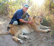 mat-lion